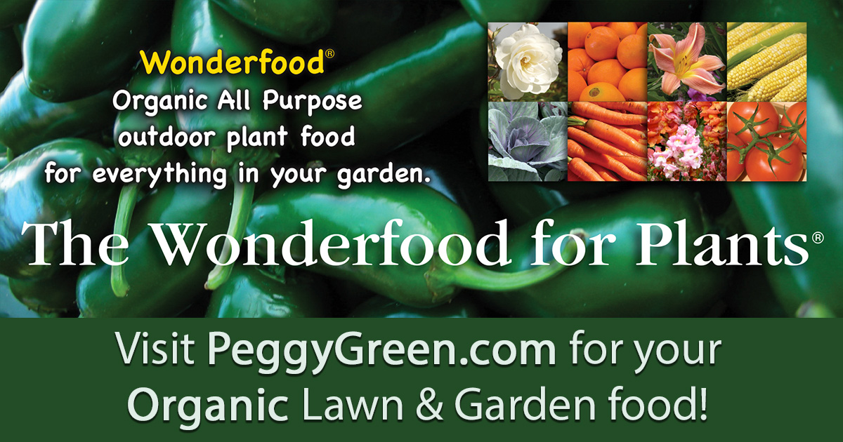 Organic Plant Food For Orchids