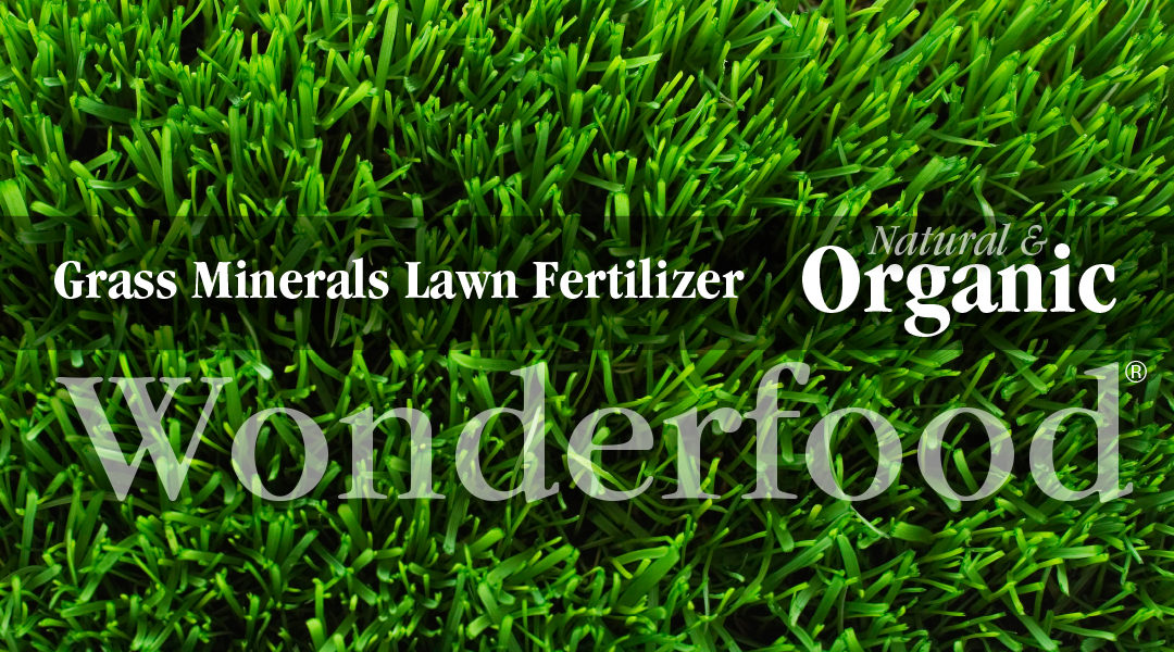Grass Minerals. The Pet Friendly Lawn Fertilizer