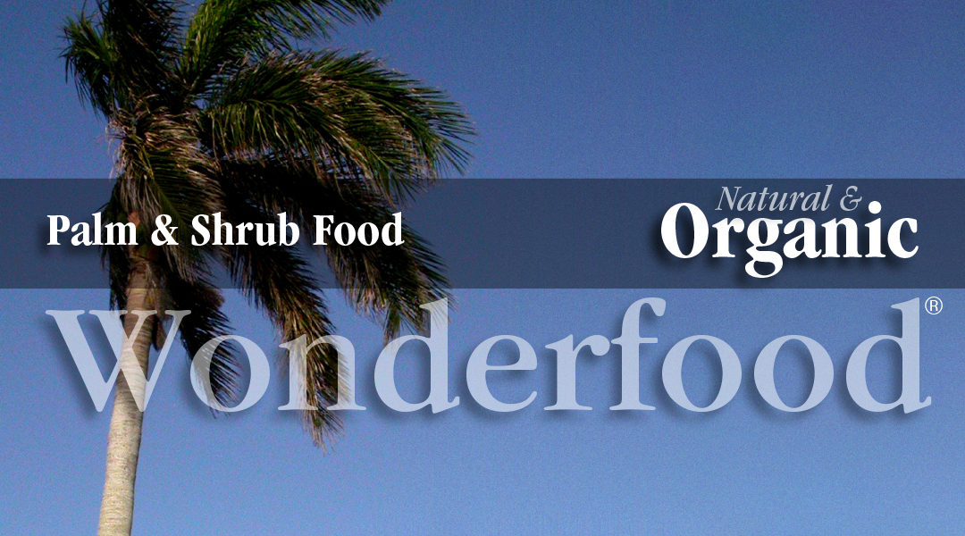 Organic palm tree food promotes healthy palms and shrubs