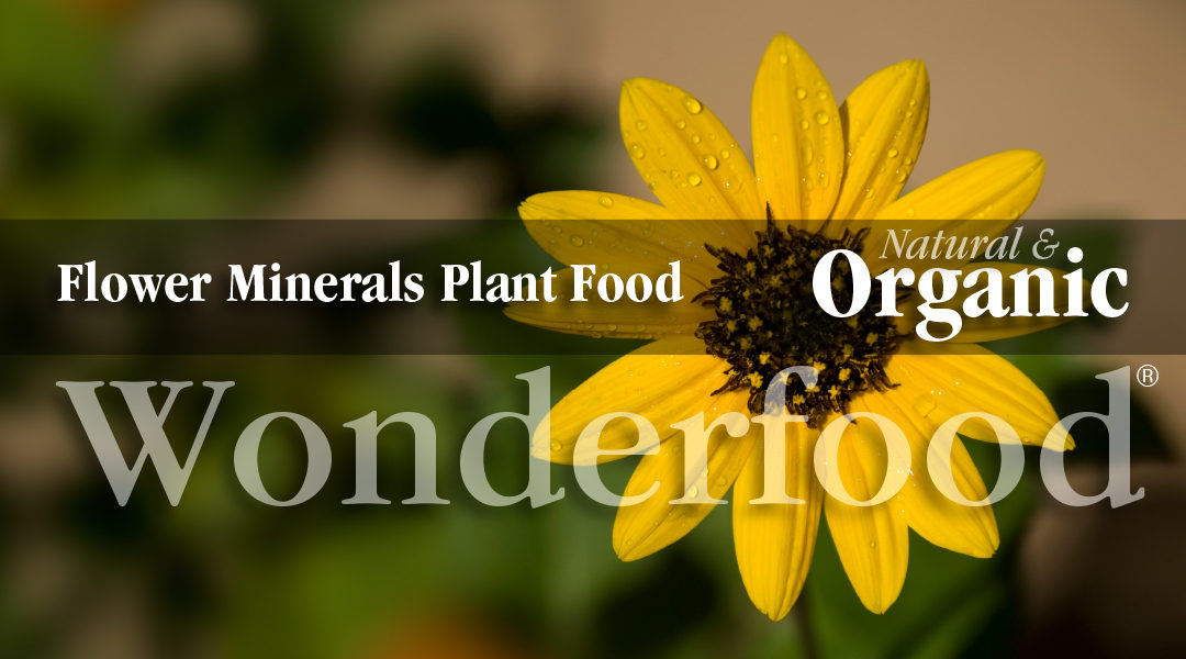 Flower Minerals Indoor Plant Food For Pots And Containers